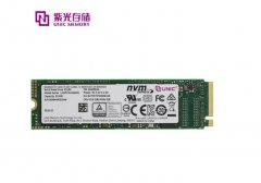 紫光推出高性能SSD P5160 顺序写